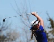 O'Gorman retakes state golf crown