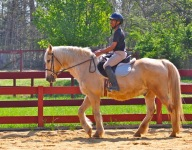 Local students defy odds to ride horses