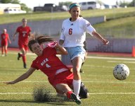 Nixa puts on show in district soccer finals