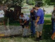 Enka football players remove tree involved in fatal wreck.
