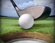 Watkins Memorial boys golf 156, Newark Catholic boys golf 166