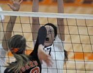 A closer look at volleyball
