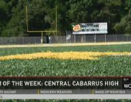 #FNFrenzy   Team of the Week - Central Cabarrus - Band