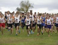 Preview: Ohio cross country regionals