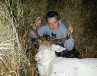 DNR: Nothing wrong in albino deer hunt