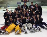 Recreation Hockey Summaries