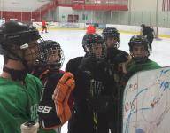 Boys hockey capsule outlook