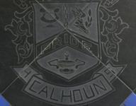 Ja'Keem Davison scores 41 for Calhoun