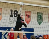 Climax-Scotts' Cook leads All-Area volleyball team