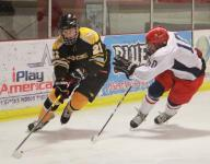 Hockey Roundup: Mike Gelatt of SJV records 100th point and more from around the Shore (1/6/15)