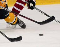 Area high school hockey teams return home