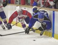 2014-15 State High School Hockey Bracket