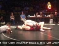 Cedar, Desert Hills wrestlers win 3 state titles