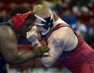 Pulaski's Micolichek advances back to state semifinals