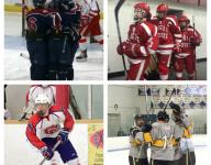 State Hockey Final Four Predictions