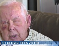 The Utah man who was stung by 400 bees at a prep baseball game was 89 ... and he's doing fine