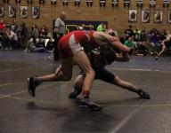 2015 Idaho state wrestling list of champions
