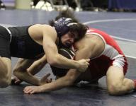By-school breakdown of area state wrestling action