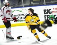 McQuaid's flag flies high atop state hockey