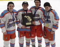 Northern Stars Mite AA wins state title