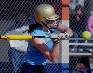 2015 Poughkeepsie Journal softball preview capsules