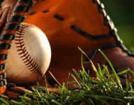 Monday's WNC baseball box scores