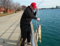 Anglers catching early-season steelhead, walleye