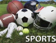 High school baseball, softball stat leaders