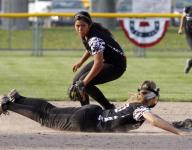 LSJ high school softball preview