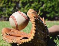 Mid-Michigan baseball, softball leaders