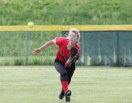 SOFTBALL: Skyland Conference and Courier News area standings, as of May 1