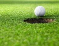 Golf: Fox Lane edges Somers; more games