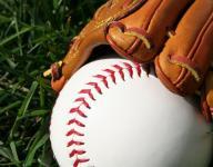 Baseball: Grega strikes out 13 in Roosevelt win over Lourdes