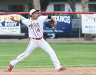 Central Section Baseball Playoff Preview