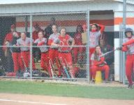 Edison whips Shelby in district softball