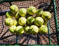 Softball roundup: Winnis' hit lifts Spartans over Blazers