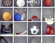 Prep roundup: SPASH softball captures regional title
