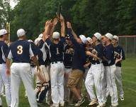 Tarn pitches DeWitt to Div. 2 baseball district repeat