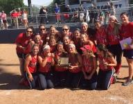 Minutemaids grab state title with near-perfect win