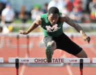 Birds fly from far outside for second place in relay