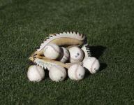 Baseball: Skyland Conference Coaches All Delaware team