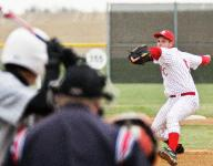 Pitch counts could save young arms
