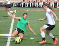 State champ Badin leads area's girls soccer landscape