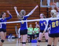 2015 High School Volleyball Preview