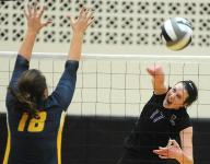 Volleyball overview: Lex brings back area's top player