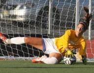 Girls soccer team-by-team preview capsules: Skyland Delaware