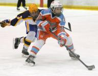 Top youth hockey teams will square off in Port Huron