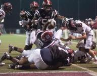 Davidson leads Cougars past Bears