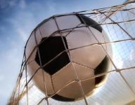 Coldwater scores 13 goals in win over Quincy