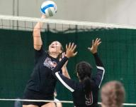 City volleyball teams among best in state